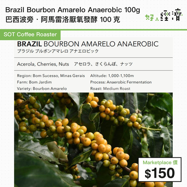 SOT Coffee Roaster - Brazil Bourbon Amarelo Anaerobic 巴西波旁·阿馬雷洛厭氧發酵 100克
