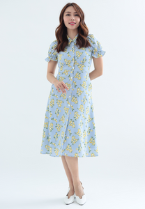 Citrus Puff Sleeves Button Down Dress (Blue)