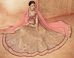 Golden & Pink Color Net Lehenga For Wedding Functions : Parimita Collection  YF-48134