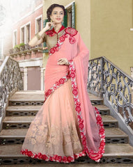 Peach & Pink Color Half Georgette & Half Net Designer Festive Sarees : Ritisha Collection  YF-53161