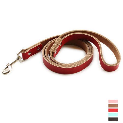 Leather Simple Princess Pet Dog Lead Dogs Collar Leashes