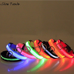 Candy LED Dog Collar