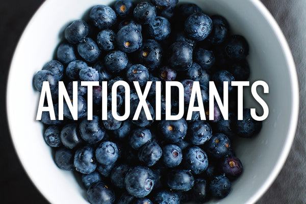 How to get more antioxidant foods into your diet – Bearded Brothers