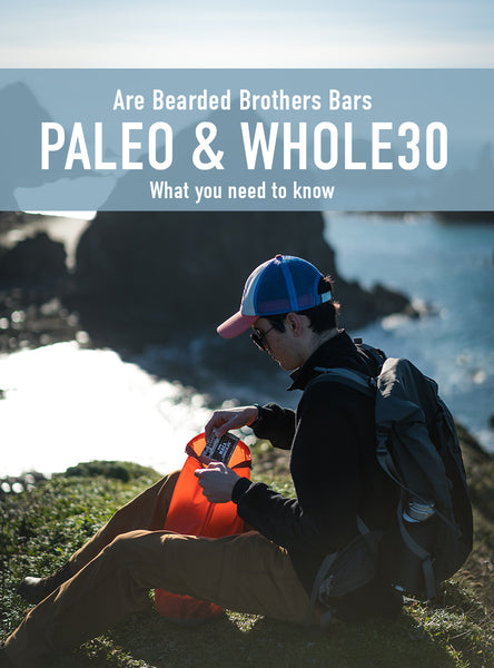 Paleo Whole30 Energy Bars