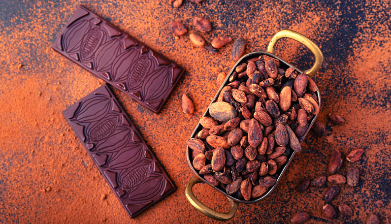 The Complete Buyer's Guide to Dark Chocolate