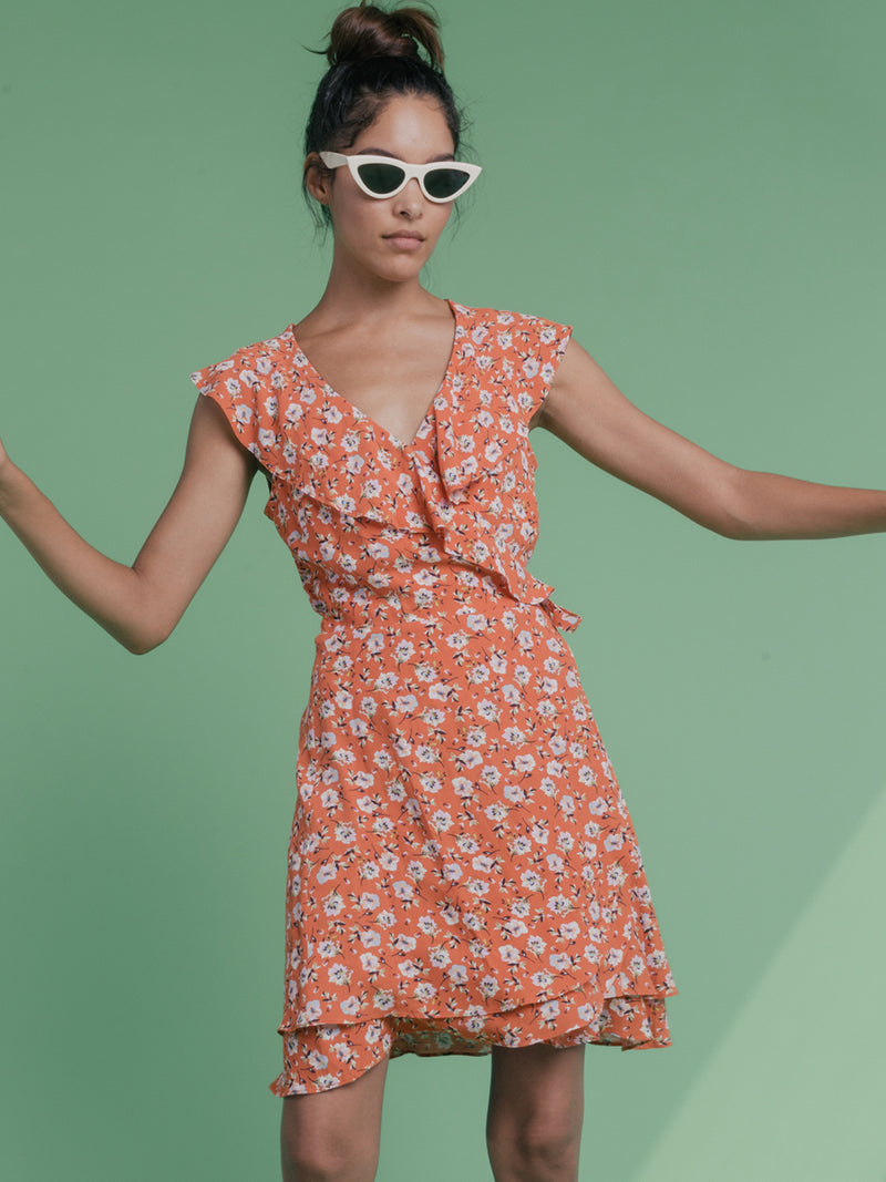 Johanna Wrap Dress Spring Fever
