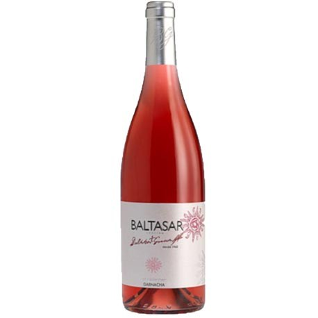 Baltasar Gracian Rose