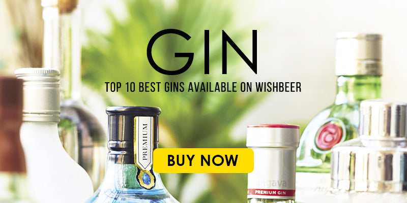 10 Best Gins Available on Wishbeer