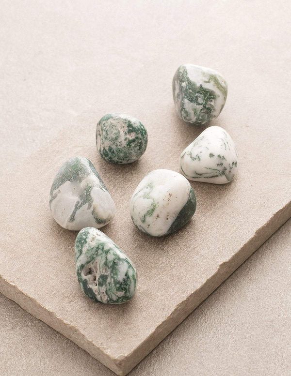 Tree Agate Pocket Stones