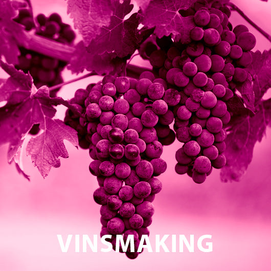 Dirty Girls Vinsmaking (Fredag 28. august kl 19:00 - Dyreparken Hotell)