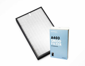 A403 SMOG Replacement Filter for P400