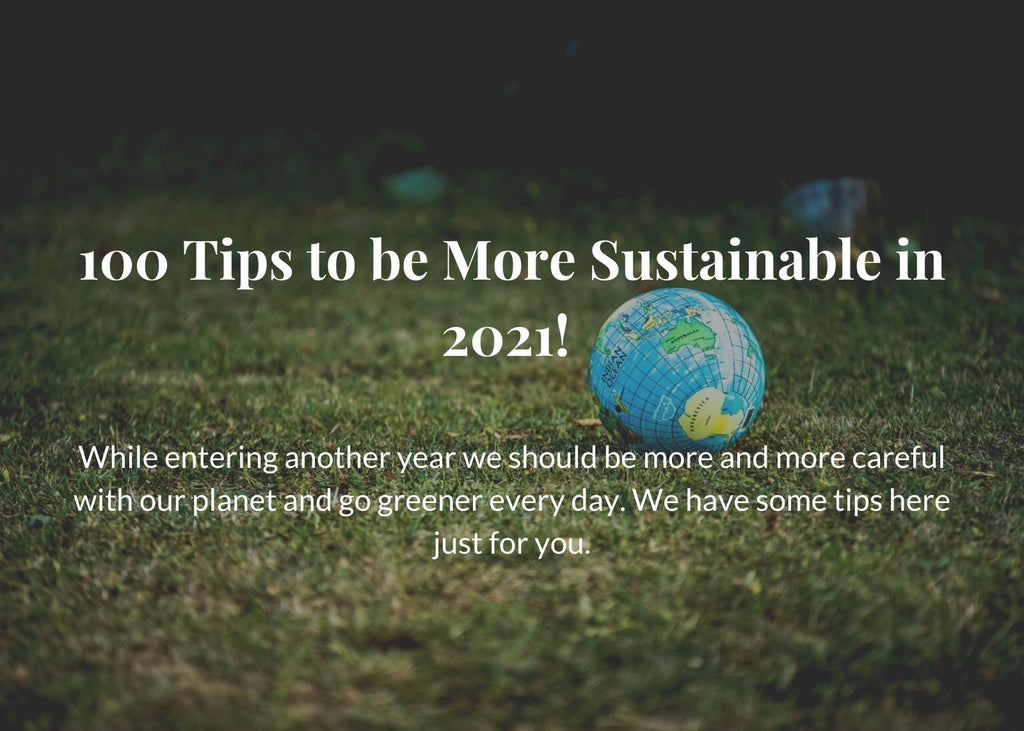 100 Tips to be More Sustainable in 2021!