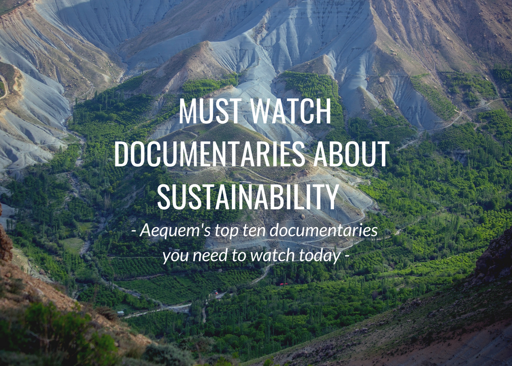 Top 10 must watch documentaries about sustainability