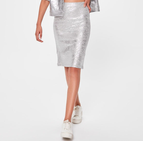 Silver Stretch Skirt