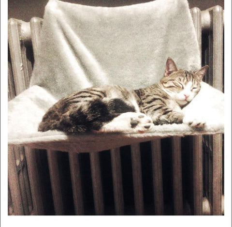 Cat Radiator Bed / Hammock - Soft Removable, Hanging Radiator Bed for Cats