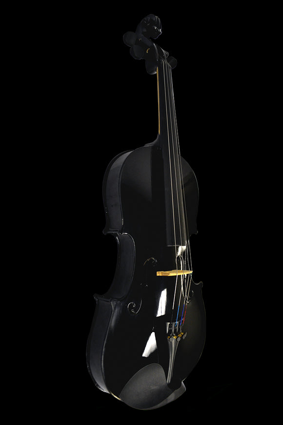 Bridgecraft 4/4 Antique Wood Violin with Carrying Case - Black