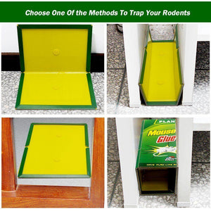 Rat Glue Traps Mouse Glue Boards 10 pack