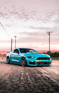 Print - Miami Blue Roush