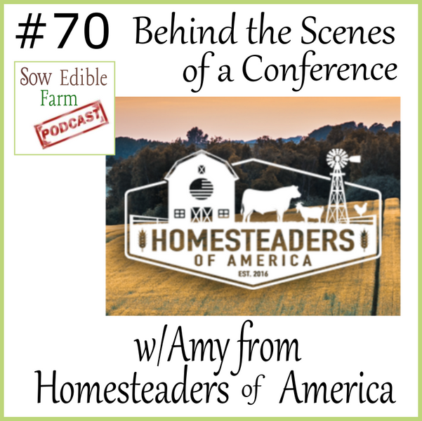 Sepp 070; Behind the Scenes of a Conference with Amy from Homesteaders of America