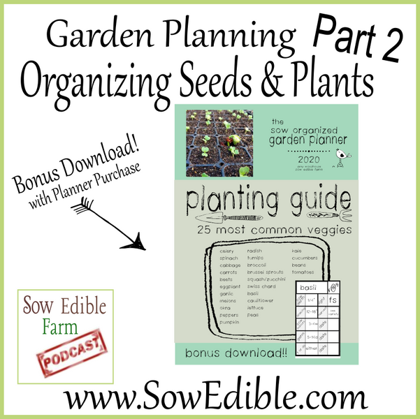 Garden Planning Part 2- Organizing Seeds & Plants