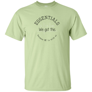 We got this essentials Gildan T-Shirt