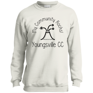 community rocks P+C Youth Crewneck