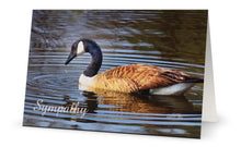 Load image into Gallery viewer, Goose Sympathy Card