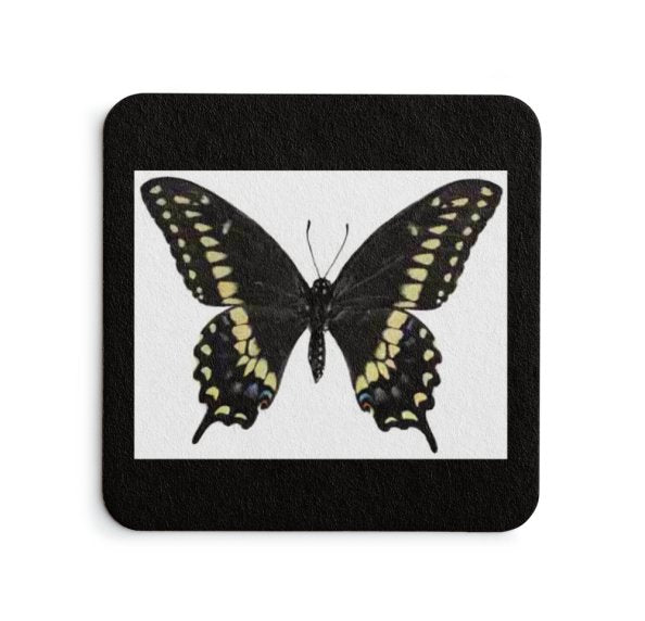 Black Butterfly Coaster