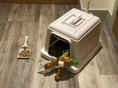 Sieve Litter Tray - Hood Only