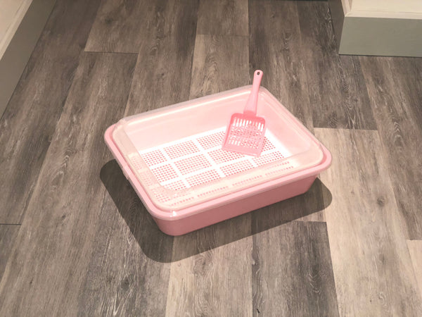 Cat / Kitten Sieve Litter Tray System ( back in stock end of November)