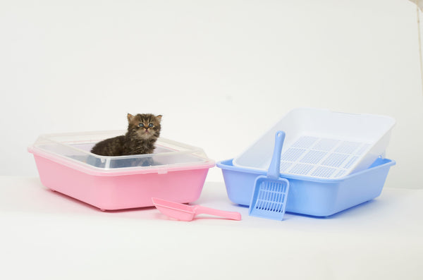 Cat / Kitten Sieve Litter Tray System with Scoop