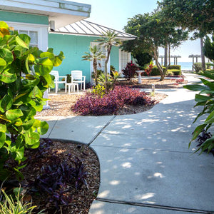 Listing #3511 Festiva Coconut Palms New Symrna Beach, FL