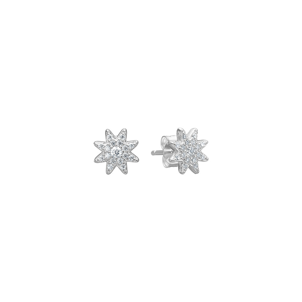 Stud Starry Sky Earring