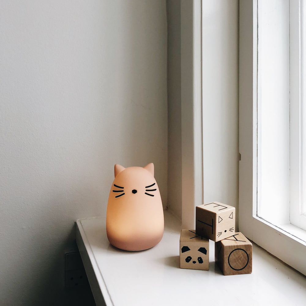 Winston / Night light - Cat Rose