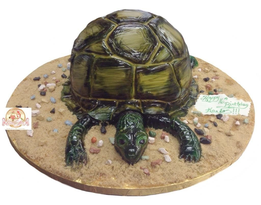 Birthday Cake Turtle on Beach - CakEffect Bakery