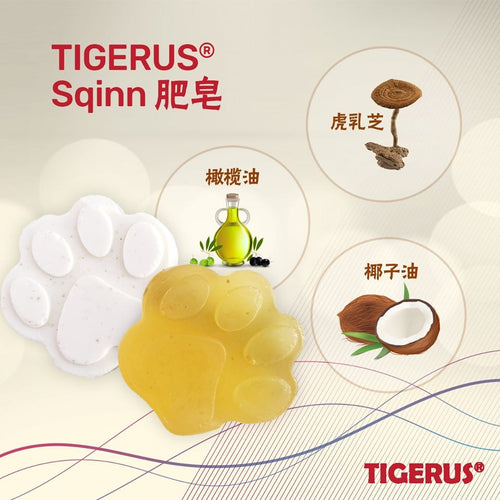 TIGERUS Tiger Milk Mushroom Soap (20mg) - Asian Integrated Medical Sdn Bhd (ielder.asia)