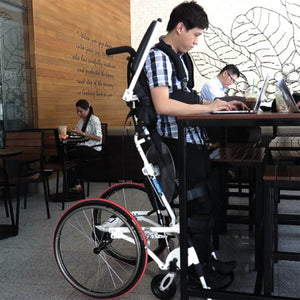 Pegasus II (Semi-Power Standing Wheelchair)