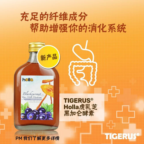 TIGERUS Holla Blackcurrant Tiger Milk Mushroom (190ml) - Asian Integrated Medical Sdn Bhd (ielder.asia)