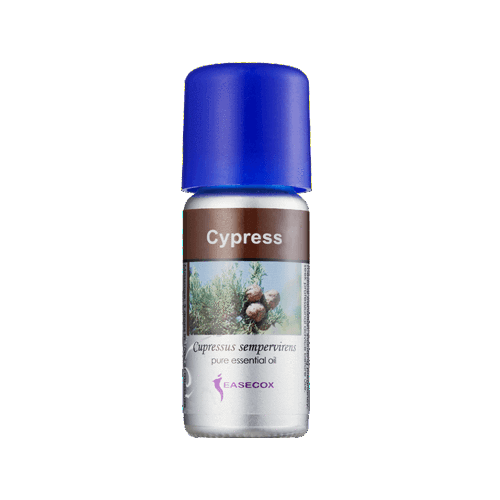 Cypress (Cupressus Sempervirens) Essential Oil (10ml) - Asian Integrated Medical Sdn Bhd (ielder.asia)