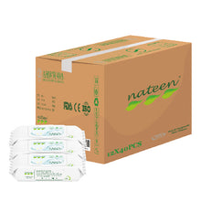NATEEN Adult Wipes With Aloe vera - Carton Sales - Asian Integrated Medical Sdn Bhd (ielder.asia)