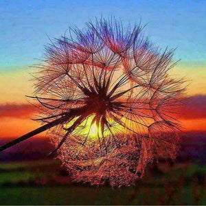 Pusteblume Diamond Painting (30x30cm)