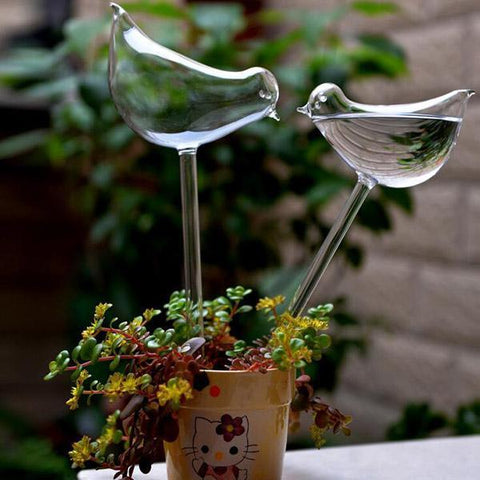 Hydro-bird self watering bulb