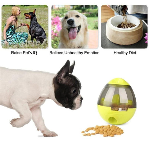 Image of Pet Toys - IQ Pet Food Dispenser Ball