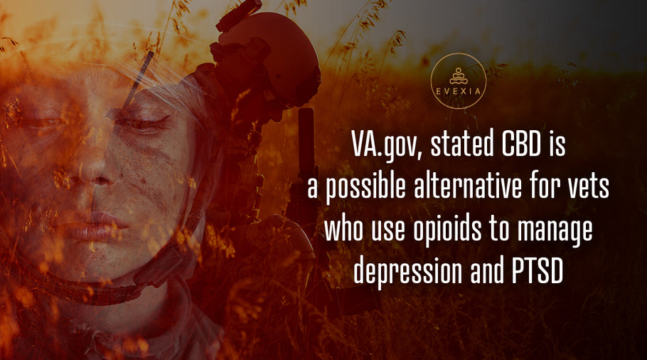 Cannabis and Veterans: The Battle After Combat