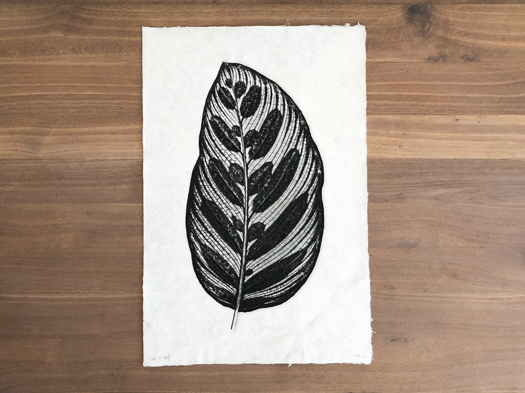 Leaf in Leaf Print Black