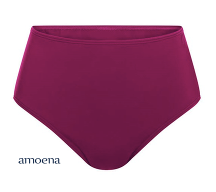 AMOENA 71386 LA PAZ HIGH WAIST BRIEF