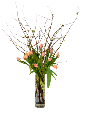 Modern Flowers - Johnathan Andrew Sage, Inc. - Houston Florist