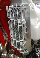 P-Tech Beta RR|RS|RR-S Radiator Guards