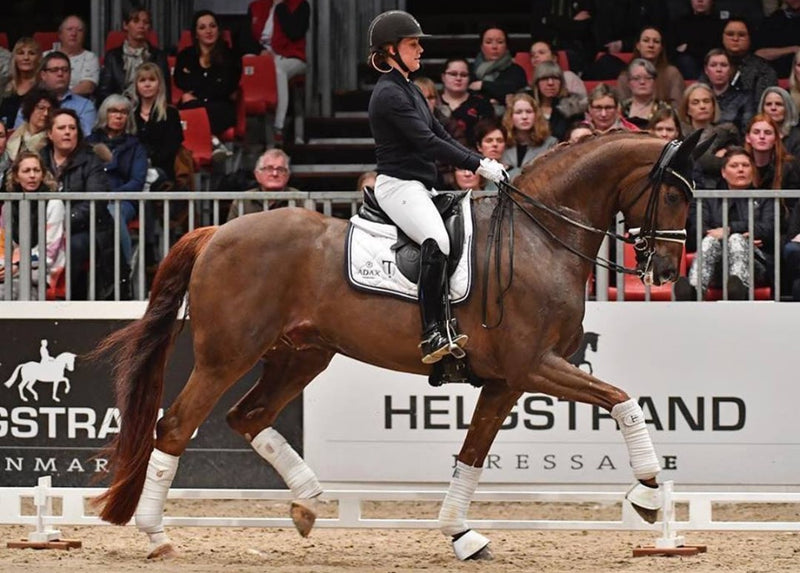 Cathrine & Bohemia at Dufour Dressage Clinic in Herning 2019 Photo courtesy of Ridehesten.com from