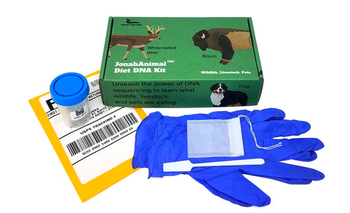 Diet DNA Kit (single)